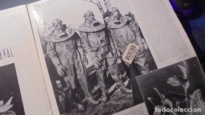 Coleccionismo de Revista Blanco y Negro: suplemento - MUJERES Y RISAS DE BLANCO Y NEGRO Nº 14 - 1936 - MUY ILUSTRADO 20 PAG. 36X27 CM. - Foto 8 - 168162824