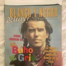 Coleccionismo de Revista Blanco y Negro: BLANCO Y NEGRO GUAY Nº 31 12-10-1999 PIERCE BROSNAN EL BUHO GRIS. Lote 209359458