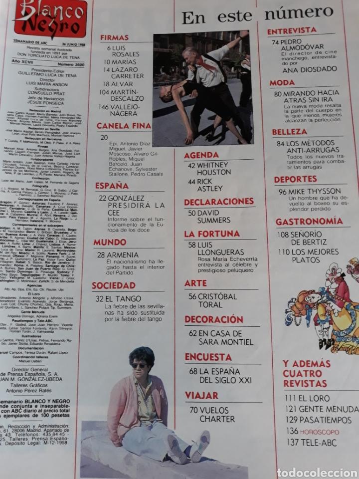 Coleccionismo de Revista Blanco y Negro: REVISTA AÑO 1988 . PEDRO ALMODÓVAR- SARA MONTIEL - DAVID SUMMERS - WHITNEY HOUSTON . VER SUMARIO. - Foto 4 - 241022280