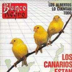 Coleccionismo de Revista Blanco y Negro: REVISTA BLANCO Y NEGRO Nº 3601 AÑO 1988.DUO DINÁMICO. VALENTÍN ALVAREZ. DEMETRIO SALGADO.. Lote 277509923