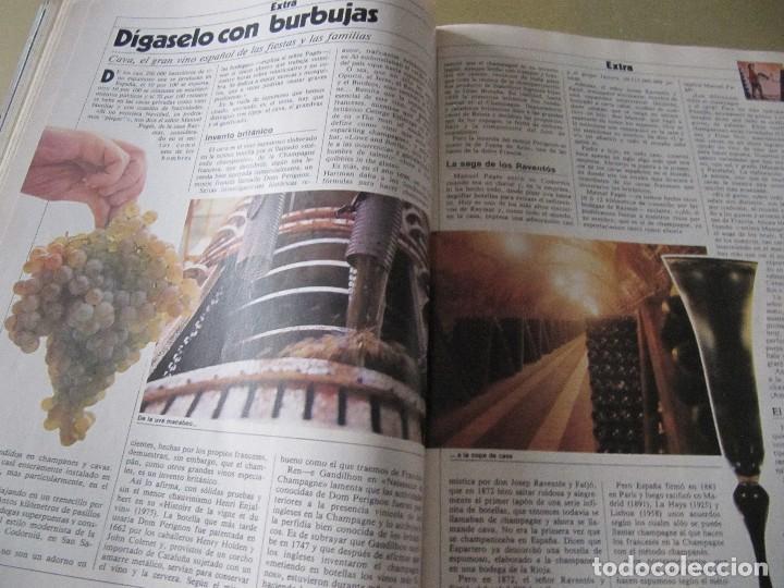Coleccionismo de Revista Cambio 16: CAMBIO 16 OCTUBRE 1982 EXTRA VINO MURILLO MOVIDA MADRILEÑA ALASKA (FANGORIA) - Foto 3 - 114318191