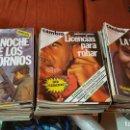 Coleccionismo de Revista Cambio 16: LOTE 95 REVISTAS CAMBIO 16 - AÑOS 1981-1982 - DEL NÚMERO 483 AL 579 (SOLO FALTAN Nº 518 Y 577). Lote 159725778