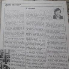 Coleccionismo de Revista Cambio 16: TRANSICION. PROPUESTA DE FELIPE GONZALEZ: QUE HACER. RECORTE CAMBIO 16, DICIEMBRE 1975. Lote 246207555