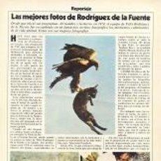 Coleccionismo de Revista Cambio 16: REVISTA CAMBIO16. CAMBIO 16 Nº 435. 06/04/1980. FÉLIX RODRÍGUEZ DE LA FUENTE.. Lote 287151448