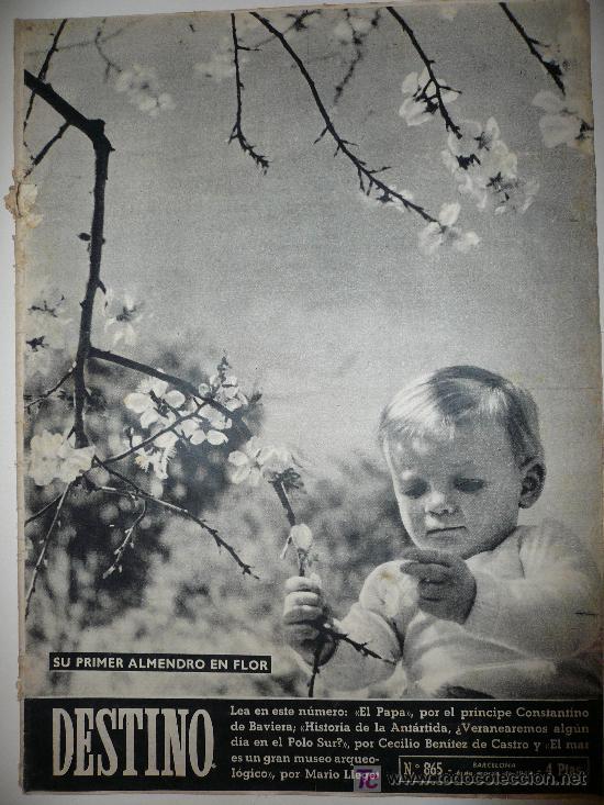 REVISTA DESTINO * Nº 865 * AÑO 1954 (Coleccionismo - Revistas y Periódicos Modernos (a partir de 1.940) - Revista Destino)