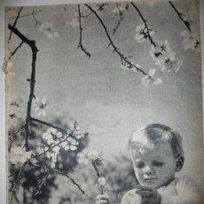 Coleccionismo de Revista Destino: REVISTA DESTINO * Nº 865 * AÑO 1954. Lote 27454631