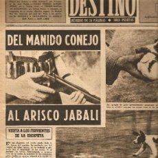 Coleccionismo de Revista Destino: AÑO 1949 CAZA ESPLUGAS CLAUSTRO JOSE ARAGAY GIRONA JEREZ BRANDY BERTOLA VARON DAND.PORT-BOU CIRCO. Lote 10776583