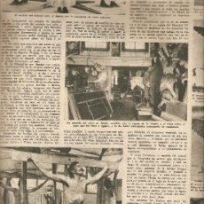 Coleccionismo de Revista Destino: AÑO 1955 ANTONIO GAUDI ESCULTOR VIRGEN DEL PUERTO EXTREMADURA TARREGA BALAGUER CANARIAS TAPIES. Lote 11609198