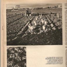 Coleccionismo de Revista Destino: AÑO 1971 JOSEP LLUIS SERT PRAT DEL LLOBREGAT AGRICULTURA LUCIO FONTANA MARILYN MONROE RELOJ RADIANT. Lote 11758706