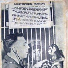 Coleccionismo de Revista Destino: REVISTA DESTINO - Nº 9.30 JUNIO DE 1955. Lote 25337487