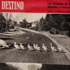 Coleccionismo de Revista Destino: . REVISTA DESTINO Nº1142 27 JUNIO 1959. Lote 42715005