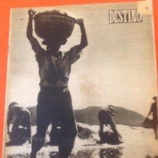 Coleccionismo de Revista Destino: . REVISTA DESTINO Nº799 27 NOVIEMBRE 1952. Lote 44686876