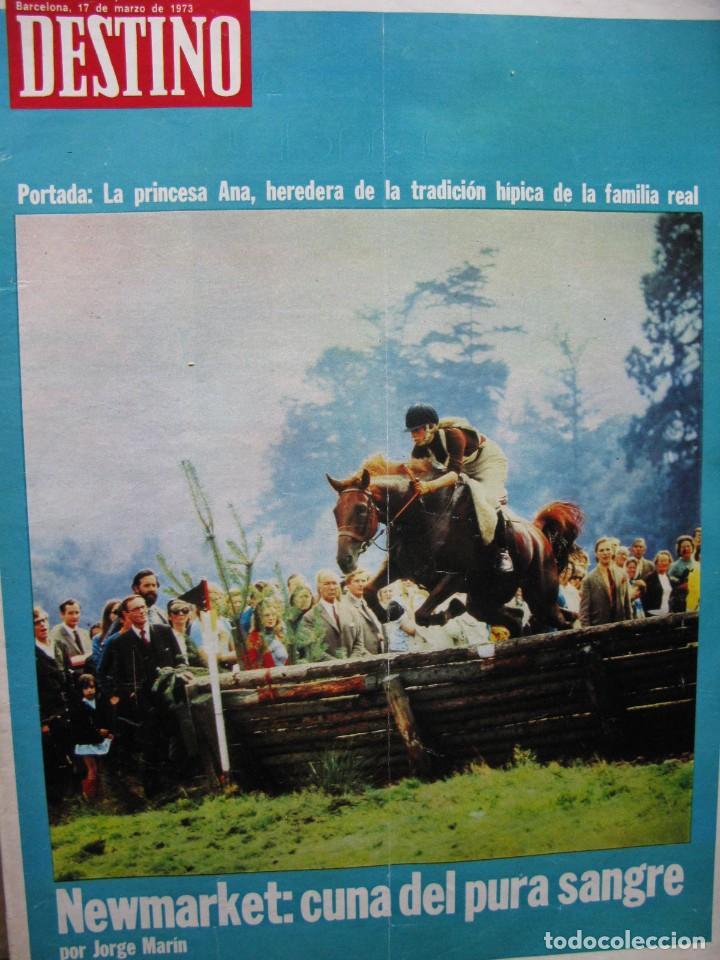 PPRLY - NEWMARKET: CUNA DEL PURA SANGRE. HABLA EL CINE ESPAÑOL: CARLOS SAURA. VER SUMARIO. (Coleccionismo - Revistas y Periódicos Modernos (a partir de 1.940) - Revista Destino)