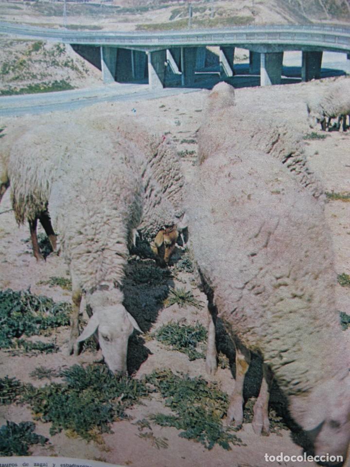 Coleccionismo de Revista Destino: PPRLY - SANT PERE DE RODA EN SU ASPECTO JURÍDICO-SOCIAL. J.V. FOIX EN PROSA. VER SUMARIO. - Foto 4 - 85879512