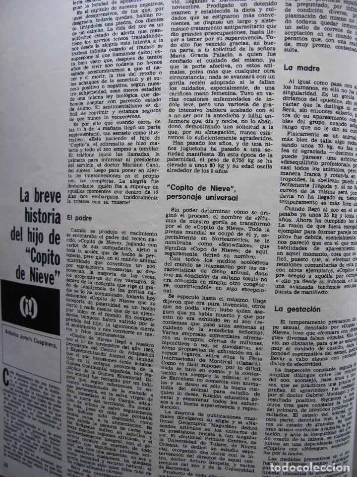 Coleccionismo de Revista Destino: PPRLY - CONCILIO DE DEMONIOS Y TERTULIA DE BRUJAS. HISTORIA DEL HIJO DE COPITO DE NIEVE. VER SUMARIO - Foto 5 - 86037564