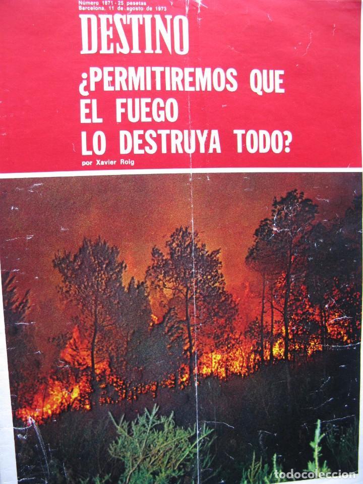 Coleccionismo de Revista Destino: PPRLY - LLORENS I BARBA, MARAGALL Y LOS KRAUSISTAS. PERE VERGÉS Y LA ESCOLA DEL MAR. VER SUMARIO. - Foto 4 - 89642100