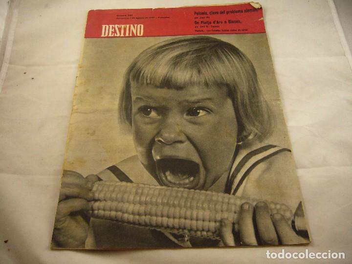 REVISTA DESTINO NUMERO 1147 (Coleccionismo - Revistas y Periódicos Modernos (a partir de 1.940) - Revista Destino)