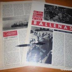 Coleccionismo de Revista Destino: RECORTE PRENSA : SE HA DE SALVAR A LAS BALLENAS . DESTINO, JULIO 1961. Lote 141578874