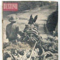 Coleccionismo de Revista Destino: DESTINO - REVISTA Nº 1365 - OCTUBRE 1963. Lote 158207646