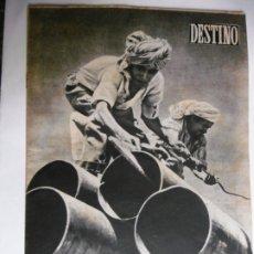 Coleccionismo de Revista Destino: REVISTA DESTINO - Nº 900 - 1954 - UNA GOTA DE PETROLEO VALE TANTO COMO UNA GOTA DE SANGRE. Lote 178823156