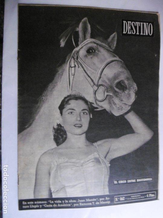 REVISTA DESTINO - Nº 862 - 1954 - EL CIRCO ENTRE BASTIDORES (Coleccionismo - Revistas y Periódicos Modernos (a partir de 1.940) - Revista Destino)