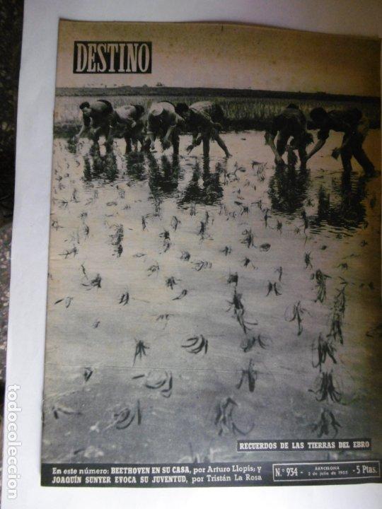 Coleccionismo de Revista Destino: REVISTA DESTINO - 1955 - 11 REVISTAS DESTINO DIFERENTES - Foto 5 - 179009620