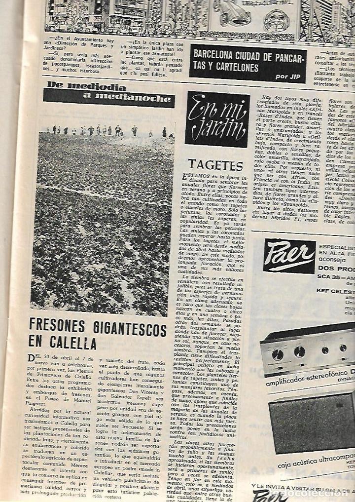Coleccionismo de Revista Destino: AÑO 1967 CALELLA FRESAS LA GOMERA ARRABAL FLOTATS TEATRO JOAN TEIXIDOR LA SARDANA Y LA COBLA BEATLES - Foto 5 - 11684209