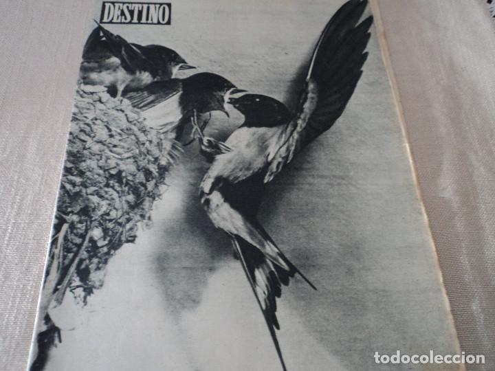 REVISTA DESTINO Nº 986- 1956 LA GRECIA DE NUESTROS DIAS, VER FOTOS (Coleccionismo - Revistas y Periódicos Modernos (a partir de 1.940) - Revista Destino)