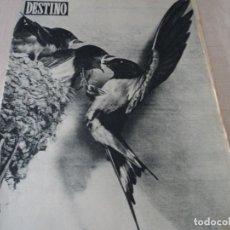 Coleccionismo de Revista Destino: REVISTA DESTINO Nº 986- 1956 LA GRECIA DE NUESTROS DIAS, VER FOTOS. Lote 192227560