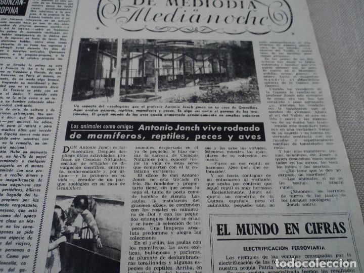 Coleccionismo de Revista Destino: REVISTA DESTINO Nº 875- 1954 EL PADRE PIERRE, ver fotos - Foto 4 - 192240723