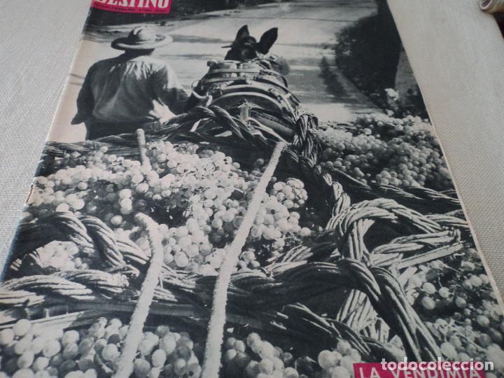 REVISTA DESTINO LA VENDIMIA, RAINIERO Y MONTECARLO, VER FOTOS (Coleccionismo - Revistas y Periódicos Modernos (a partir de 1.940) - Revista Destino)
