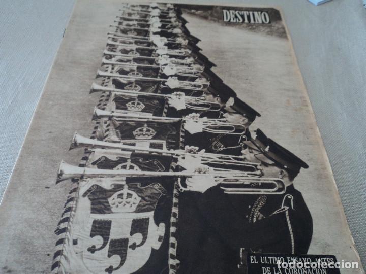 REVISTA DESTINO Nº 972, AÑO 1953 MOMIAS EN EL VALLE DE LOS REYES VER FOTOS (Coleccionismo - Revistas y Periódicos Modernos (a partir de 1.940) - Revista Destino)