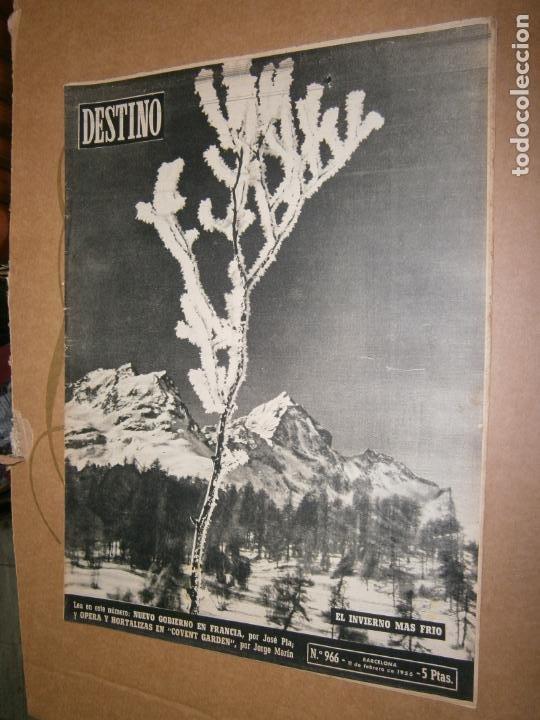 DESTINO Nº 966 AÑO 1956 EL INVIERNO MAS FRIO (Coleccionismo - Revistas y Periódicos Modernos (a partir de 1.940) - Revista Destino)