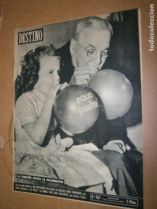 DESTINO Nº 967 AÑO 1956 LA CAMPAÑA CONTRA LA POLIOMELITIS (Coleccionismo - Revistas y Periódicos Modernos (a partir de 1.940) - Revista Destino)
