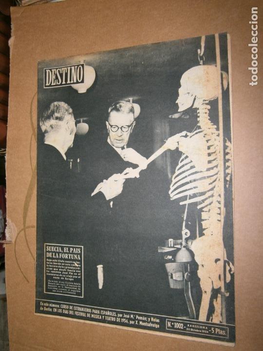 DESTINO Nº 1002 AÑO 1956 SUECIA EL PAIS DE LA FORTUNA (Coleccionismo - Revistas y Periódicos Modernos (a partir de 1.940) - Revista Destino)