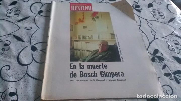 DESTINO, MUERTE BOSCH GIMPERA (Coleccionismo - Revistas y Periódicos Modernos (a partir de 1.940) - Revista Destino)