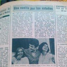 Coleccionismo de Revista Diez Minutos: RECORTES JUAN DIEGO VERONICA LUJAN IRENE DAINA. Lote 43940529