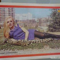 Coleccionismo de Revista Diez Minutos: POSTER DE LA REVISTA DIEZ MINUTOS AÑO 1972. ACTRICES ACTORES CANTANTES 40 X 27 CM DIANICK ZURAKOWSKA. Lote 98516039