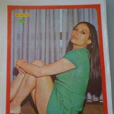 Coleccionismo de Revista Diez Minutos: POSTER DE LA REVISTA DIEZ MINUTOS AÑO 1972. ACTRICES ACTORES CANTANTES 40 X 27 CM DIANA LORIS. Lote 98516079