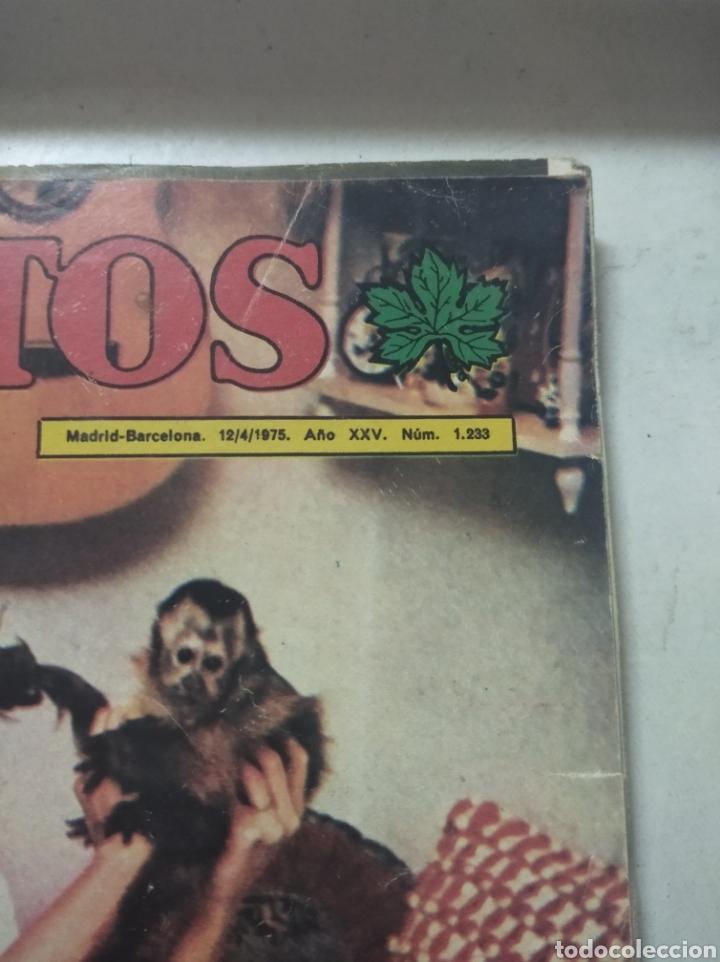 Coleccionismo de Revista Diez Minutos: Lote de revistas Diez minutos antiguas - Foto 5 - 206359387