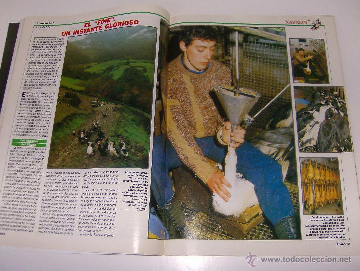 Coleccionismo de Revista Época: REVISTA EPOCA Nº 146. 1987 LA BAZA SECRETA DE THYSSEM, CUANDO EL AUTOMOVIL SE HACE CULTURA... - Foto 6 - 53256074