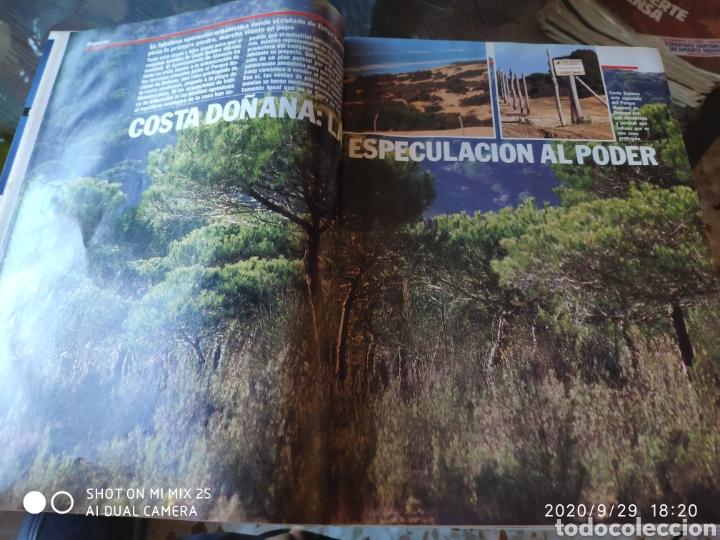 Coleccionismo de Revista Época: REVISTA EPOCA N° 259 (19 FEBRERO 1990) - Foto 2 - 219205208