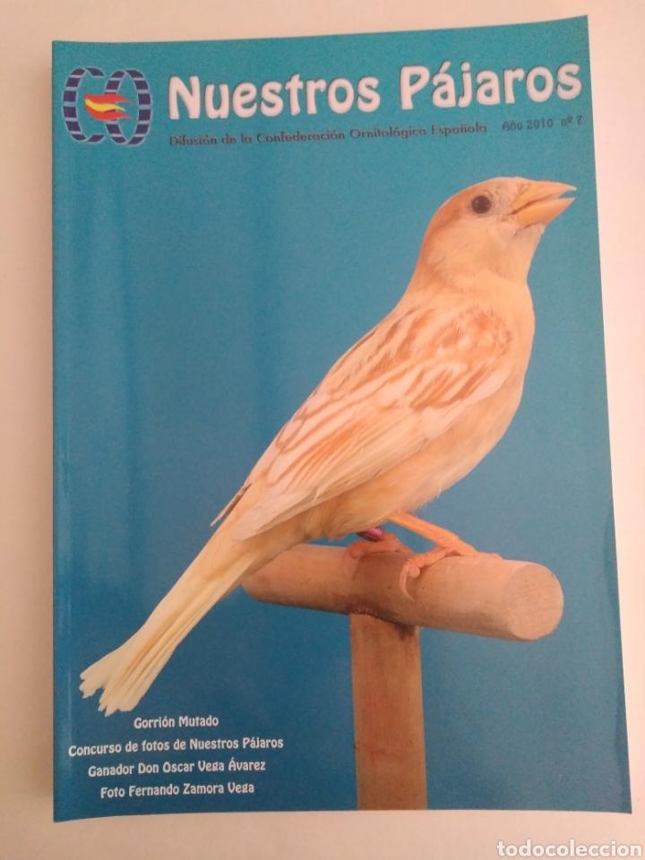 Coleccionismo de Revista Época: Nuestros pájaros. Confederación Ornitológica Española. Lote números 1, 3 y 7. - Foto 2 - 251831810