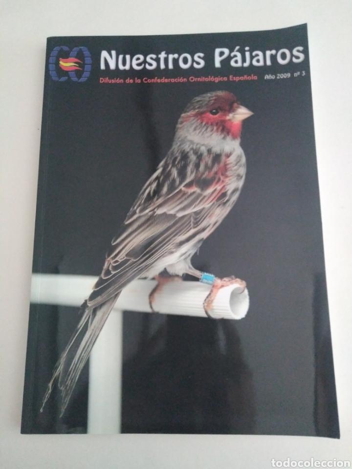 Coleccionismo de Revista Época: Nuestros pájaros. Confederación Ornitológica Española. Lote números 1, 3 y 7. - Foto 3 - 251831810