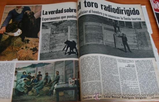 Coleccionismo de Revista Gaceta Ilustrada: GACETA ILUSTRADA 393 1964, DIARIO JUAN XXIII, TORO RADIODIRIGIDO, SHAKESPEARE, MONICA VITTI - Foto 2 - 37788655