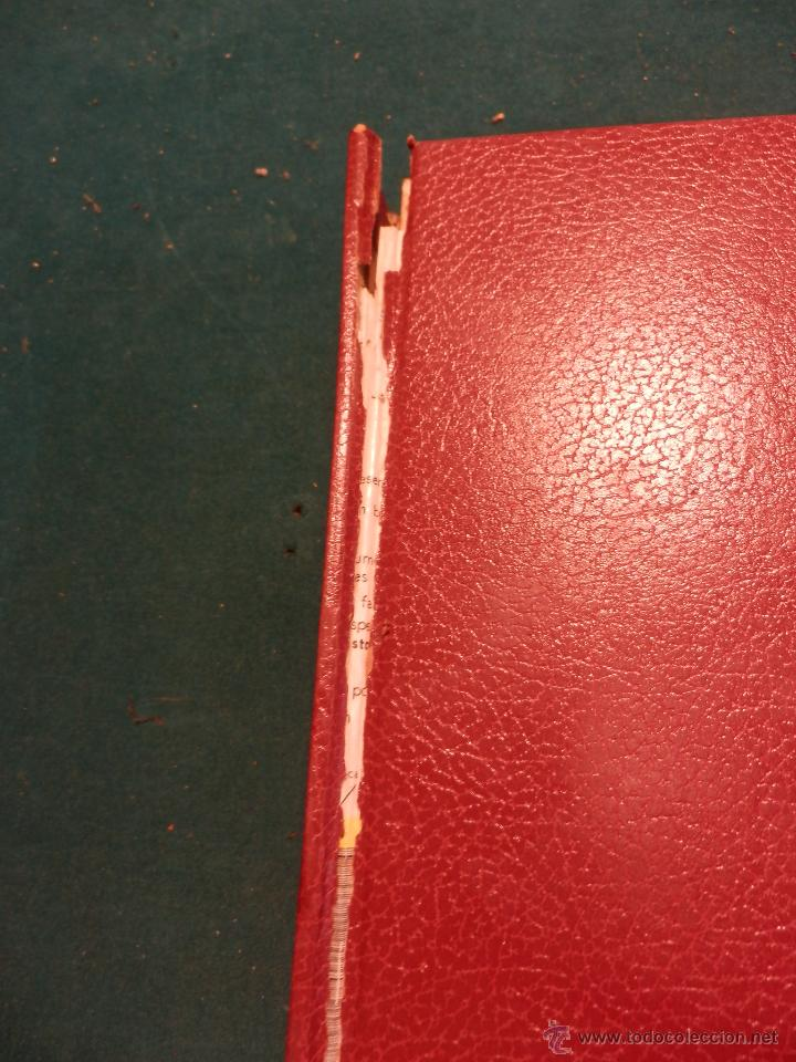 Coleccionismo de Revista Gaceta Ilustrada: GACETA ILUSTRADA -TOMO AÑO 1973 CON 8 REVISTAS-MARLON BRANDO-PICASSO-MASSIEL-MARI TRINI-LIZA MINELLI - Foto 13 - 46552209