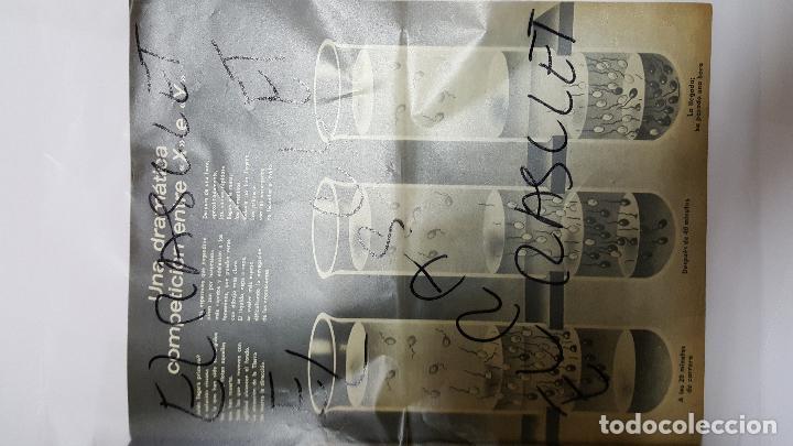 Coleccionismo de Revista Gaceta Ilustrada: ANTIGUA REVISTA - GACETA ILUSTRADA - Nº 902 - NIÑO O NIÑA SEGUN QUIERAN LOS PADRES - - Foto 2 - 72406379