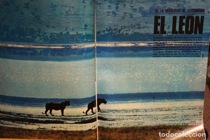 Coleccionismo de Revista Gaceta Ilustrada: GACETA ILUSTRADA Nº 676 AÑO 1969 / HO CHI MINH FELLINI CITROEN PERLAS LINDA JACKIE LEON ATLANTIDA - Foto 7 - 203010127