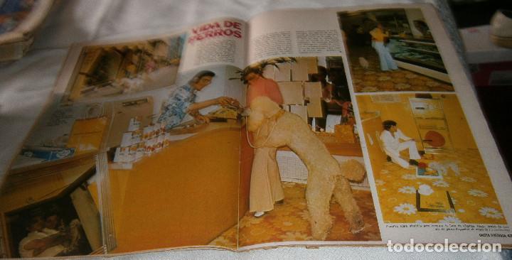 Coleccionismo de Revista Gaceta Ilustrada: gaceta ilustrada nº 900 enero de 1974 aprenda a echar las cartas los misterios del tarot - Foto 2 - 218940192