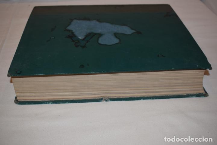 Coleccionismo de Revista Gaceta Ilustrada: TOMO ENCUADERNADO DE 14 REVISTAS * GACETA ILUSTRADA * AÑO 1971 - COMPLETAS Y EN BUEN ESTADO - Foto 5 - 226832795